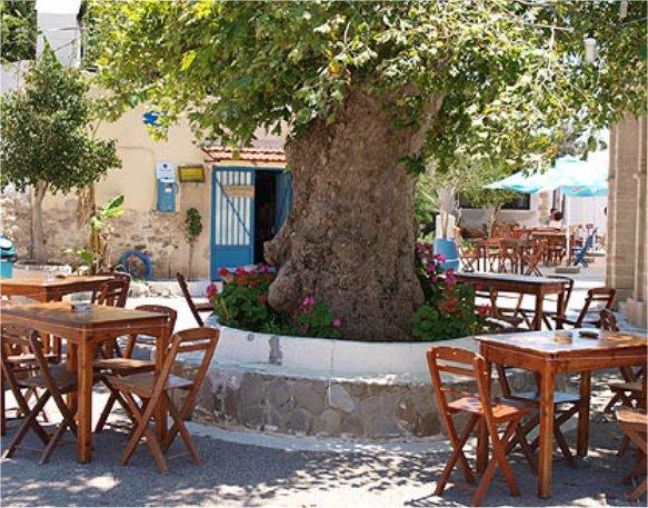 Abbildung Platanos Taverna